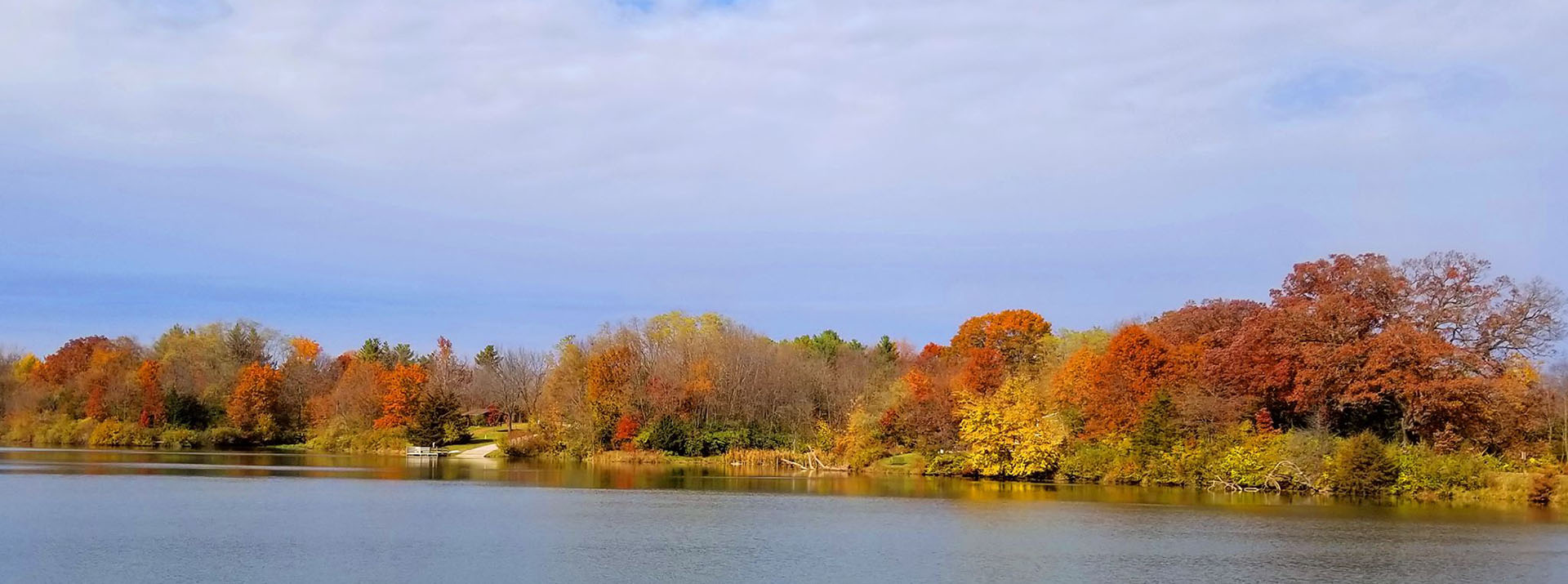 Lake surrounded by trees in autumn